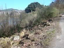 Adecuación da ribeira do río á altura de A Ponte.