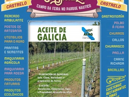 Feira de Castrelo: Aceite de Galicia