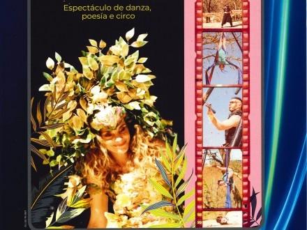 Conmemoración día das letras galegas