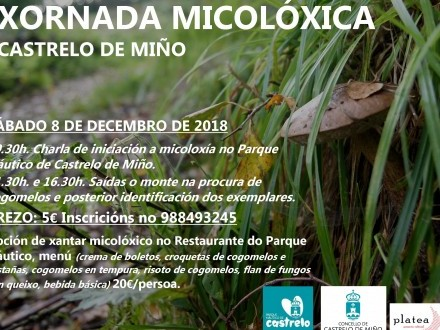 JORNADA MICOLÓGICA (CASTRELO DE MIÑO)