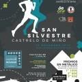 XIX San Silvestre de Castrelo de Miño